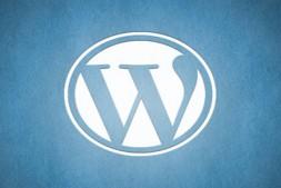 WordPress优化:6种方法加快WordPress网站运行